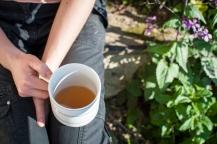 Čaj z bylinek ze zahrady, foto ED