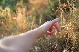 Jen ležet v trávě na vlastní zahradě, snít, přemýšlet i nemyslet