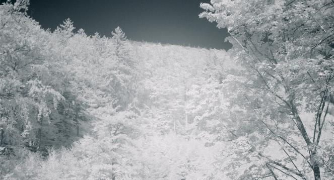 Still-Kaltes-Tal-03.jpg