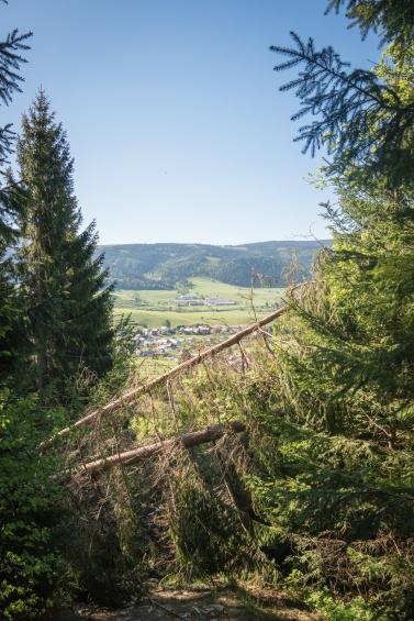 """Začátek výletu na Kráľovu hoľu, """"gentle breeze""""! Nízké Tatry nad Telgártem, Slovensko"""