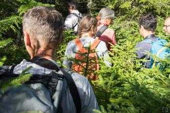 20leté výročí blokády kácení Trojmezenského pralesa, Šumava 2019